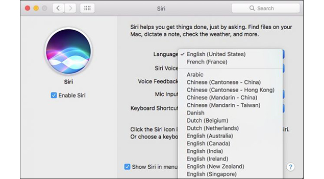 Using Siri Voice Changer Option For Switching Siri Assistant Voice On iPhoneiPad