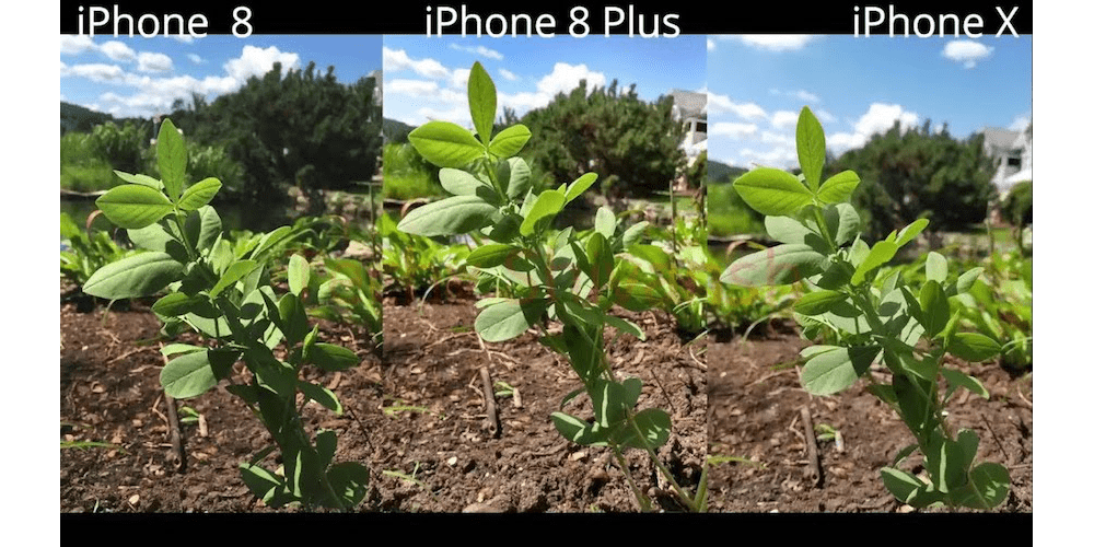 iPhone X vs iPhone 8 – Camera Comparison-Everything R